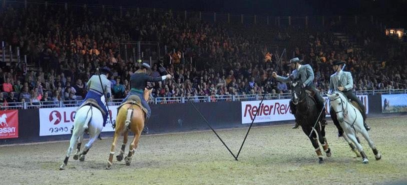 lusitanos-equitana2015
