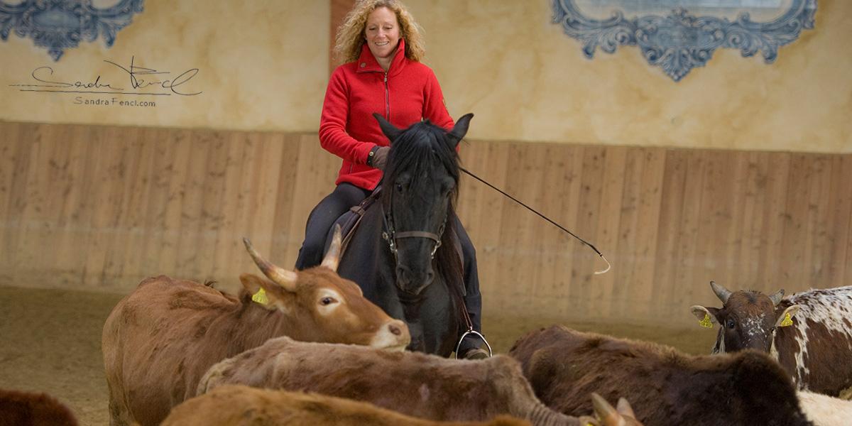 Andrea Jänisch bei der Rinderarbeit