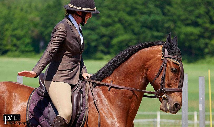Pferdemähne einpflechten